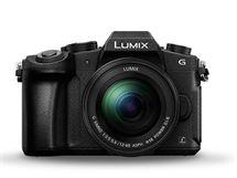 Panasonic LUMIX DMC-G80M с  LUMIX G VARIO 12-60mm f/3.5-5.6 ASPH. POWER O.I.S.
